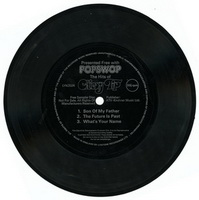 Popswop - Chicory Tip Flexi Disc